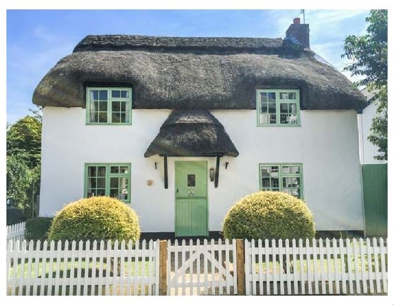 Click here for more about Thatchings