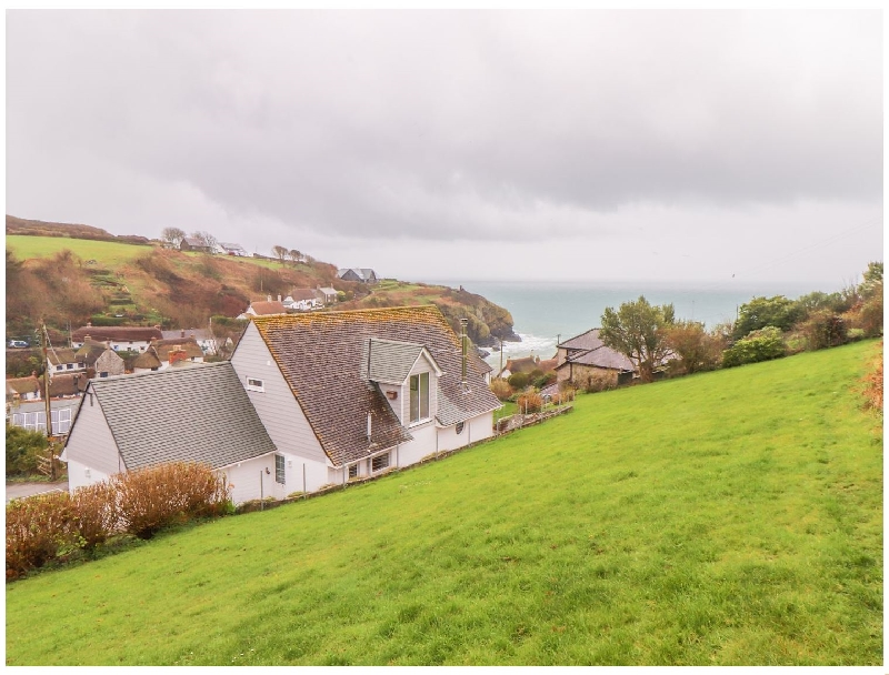 Click here for more about Spinnaker- Cadgwith