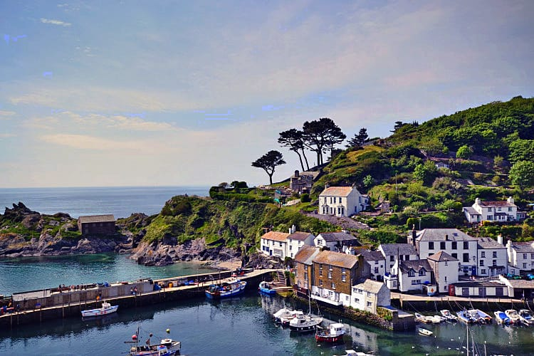 Click here for more about Pilchard Rock